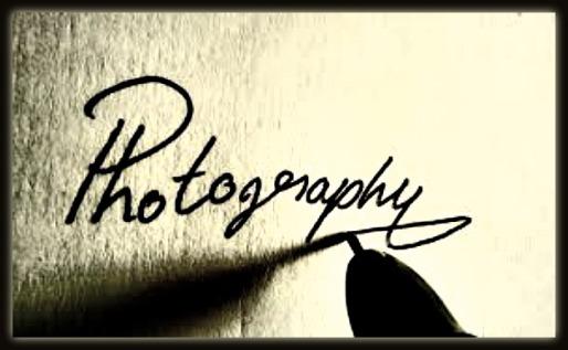 Photo Gallery 1