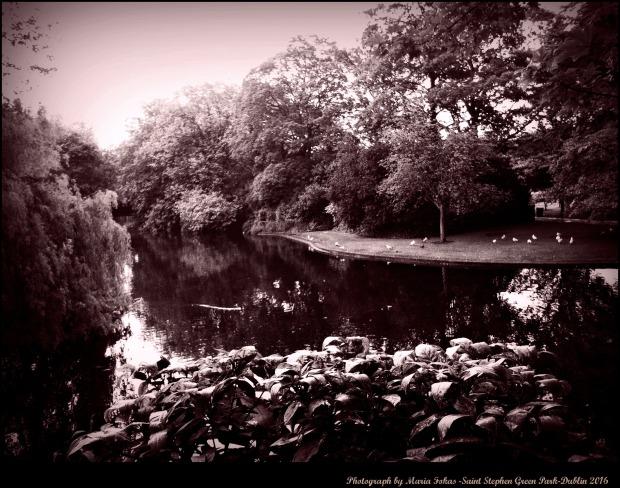 St Stephan Park Dublin